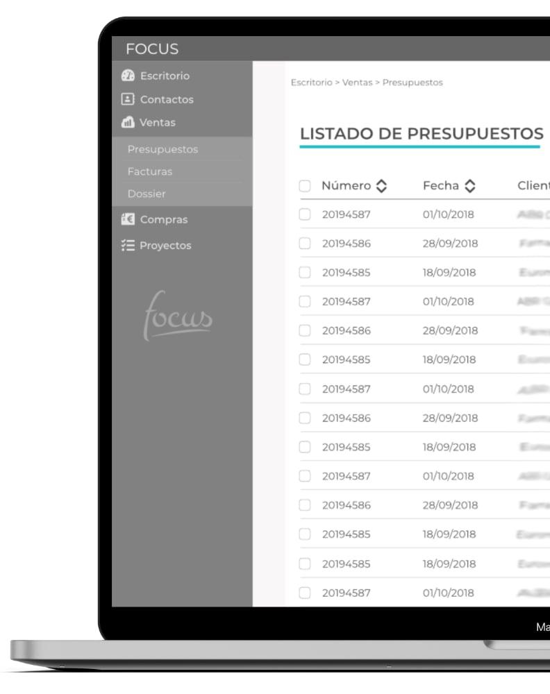 Presupuestos Focus app. Imagen Elaborada por Lacebot para Desarrollo Web en Mallorca